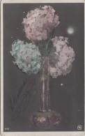 Matériaux Différents - Fantaisie - Hortensias - Petites Billes Translucides - Ansichtskarten