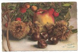 Fruits - Illustrateur Carlo CHIOSTRI - Chiostri, Carlo