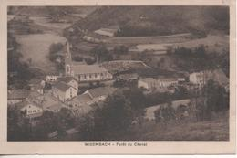 WISEMBACH FORET DU CHENAT - France