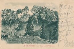 U.368.  Monte Cristallo Vom Wege Nach Plaetzwiesen - 1899!! - Non Classés