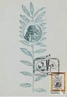 Grèce Carte Maximum 1987 Anniversaires Gravure 1647 - Maximum Cards & Covers