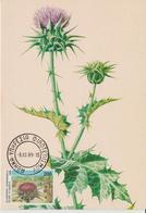Grèce Carte Maximum 1989 Fleurs Chardon 1721 - Maximum Cards & Covers