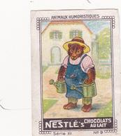 CHROMO 4 X 6 Animal Humanisé Position Humaine Ours Ourson Teddy Jardinier Bear Tragen Gardener Gärtner - Nestlé