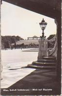 Wien    191           Schloss Schônbrunn. Blick Auf Gloriette - Château De Schönbrunn