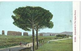 Roma - Acquedotti In Via Appia Nuova - Andere Monumente & Gebäude
