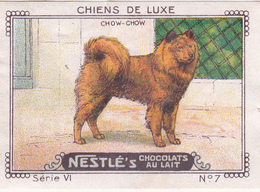 CHROMO 4 X 6 Animal Chien De Luxe Dog Hund Chow-Chow - Nestlé