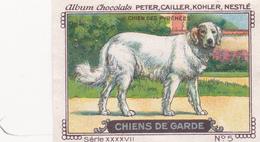 CHROMO 4 X 6 Animal Chien De Garde Dog Hund Chien Des Pyrénées - Nestlé