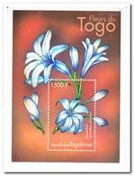 Togo 2000, Postfris MNH, Flowers - Togo (1960-...)
