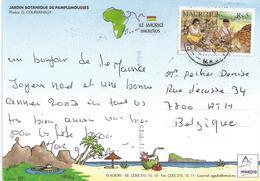 Mauritius 2002 Port Louis Coconut Industry Viewcard - Mauritius (1968-...)