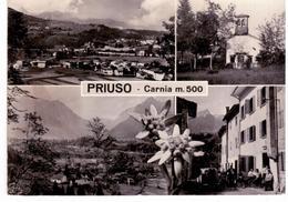 Priuso ( Carnia) - Vedute - Udine