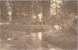 Dépt 80 - BERGICOURT - ÉPREUVE De CARTE POSTALE (photo R. LELONG) + PLAQUE De VERRE D'origine - Les Évoissons (rivière) - France