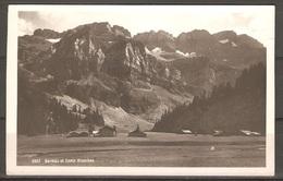 Carte P ( Suisse / Barmaz Et Dents Blanches ) - VS Valais