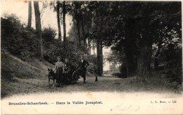 1 CPA SCHAERBEEK éd L.L. 133  C1904 Hondenkar   Attelage De Chiens TREKHOND  Transport Canine Dans La Vallée Josaphat - Petits Métiers