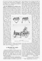 """LA MECANIQUE DES JOUETS """" L'ane Qui Galope """"   1894 - Non Classés"""