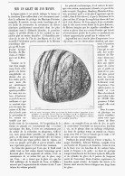 LE GALET De JAN MAYEN   1894 - Minerals