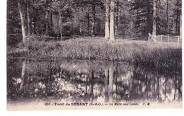 Forêt De Sénart - La Mare Aux Canes - Sénart