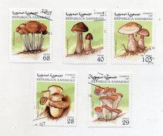 SAHARAUI - 1997 - Lotto 5 Francobolli Tematica Funghi - Usati - (FDC11558) - Funghi