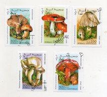 SOMALIA - 1998 - Lotto 5 Francobolli Tematica Funghi - Usati - (FDC11562) - Funghi
