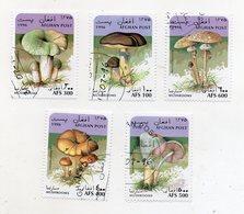 AFGHANISTAN - 1996 - Lotto 5 Francobolli Tematica Funghi - Usati - (FDC11563) - Funghi