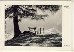 RASTPLATZ IM GEBIRGE TIROL FOTO DR. DEFNER 1953 - Fotografie