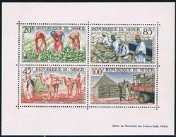 Niger - Campagne Arachidière BF 2 (année 1963) ** - Niger (1960-...)