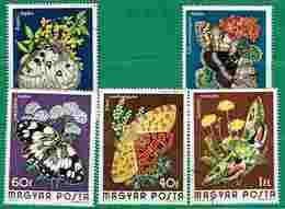 Ungheria - Farfalle - Farfalle