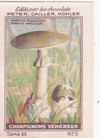 Chromo Publicitaire 4 X 6 Champignon Vnéneux Mushroom Pilz Amanite Phalloïde - Nestlé