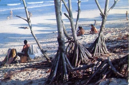 Oyster Bay Beach - Daressalaam - Tanziana - Formato Grande Viaggiata – E 7 - Tanzania
