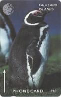 Falklands - Jackass Penguin, 6CWFA, 1995, 30.000ex, Used - Falkland Islands