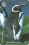 Falklands - Jackass Penguin, 184CFKB, 1997, 10.000ex, Used - Falkland Islands