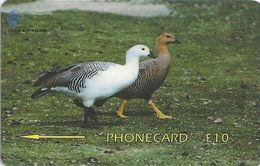 Falklands - Male & Female Upland Geese, 339CFKB, 2000, 10.000ex, Used - Falkland Islands