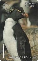 Falklands - Rockhopper Penguin, 184CFKA, 1997, 6.000ex, Used - Falkland Islands