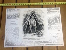 1865 GRAVURE L HOMME SAUVAGE DU DEPARTEMENT DU VAR BOIS ENVIRON D HYERES - Vieux Papiers