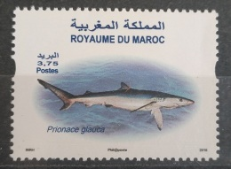 Morocco 2016 MNH Stamp - Fish, Shark Prionace Glauce - Morocco (1956-...)