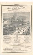 PUB 1881  Verrerie Rozan à Marseille à Rive De Gier Loire Verreries De Vierzon Ville Et Vierzon Forges ( Usine ) - France