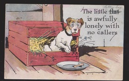 Comic Postcard - Lonely With No Callers - Dog In Box - Used 1916 - Comics