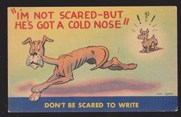 Comic Postcard - Dog With Cold Nose - Used 1945 - Comics
