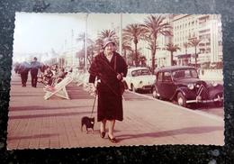 NICE - Promenade Des Anglais - CITROEN  Traction - Renault Dauphine - - Reproductions