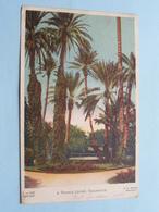 A Tennis Court KHARTOUM ( Morhig ) Anno 1921 ( Voir Photo ) ! - Soudan