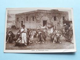 ADEN - A Caravan's Halt ( Benghiat ) Anno 19?? ( Voir Photo ) ! - Yémen