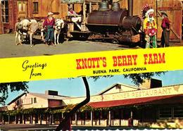 ETATS UNIS - GREETING FROM - KNOTT'S BERRY FARM BUENA PARK CALIFORNIA - Etats-Unis