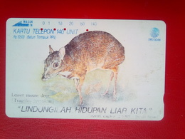 Mouse Deer 140 Units - Indonesia