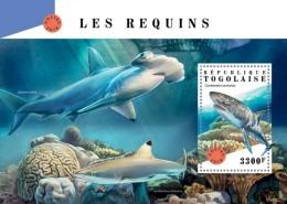 Togo 2018   Sharks S201807 - Togo (1960-...)