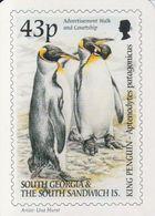 South Georgia 2001 Calender Card / King Penguin (40247) - Zuid-Georgia