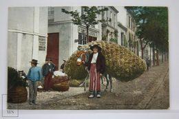 Postcard Spain - Sevilla - Vendedor De Paja - Seville Hay Seller Donkey - Tomas Sanz - Purger & Co. - Sevilla