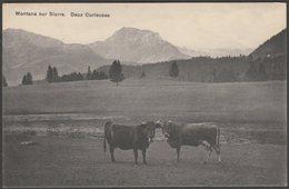 Deux Curieuses, Montana Sur Sierre, Valais, C.1920 - Werro CPA - VS Valais