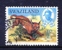 Swaziland 1969 Wildlife - ½c Caracal Used (SG 161) - Swaziland (1968-...)