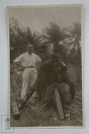 Postcard Africa - Colonial Hunter - Dead Gorilla Trophy - Private Photographic Postcard - Postales