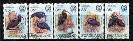 Swaziland 1984 Wildlife Conservation - Bald Ibis Set Used (SG 448-452) - Swaziland (1968-...)