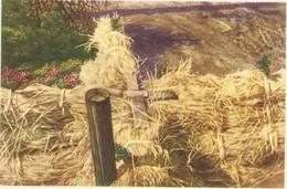 Chromo : Flandre : Croix De Bois Placée Sur Les Bottes De Paille - Folklore Belge Cote D'or 2 E Série N° 249 (chocolat) - Belgique